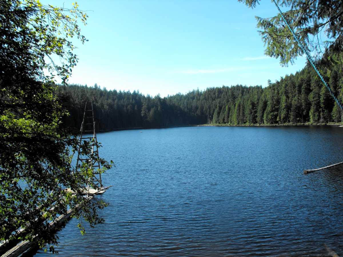 Camping Blue Jay Lake Farm Cortes Island Bc